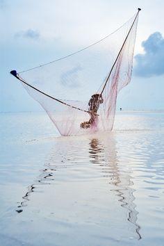 Shell picker, Bac Lieu - Vietnam