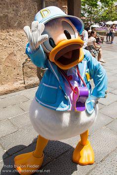 2014 - Donald Duck