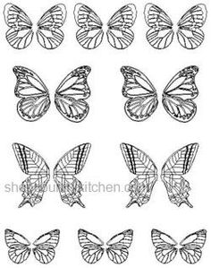 """Gelatin Veining Sheet- Butterflies  Veining sheets are used to create gelatin flowers, leaves and butterflies. May also be used as veiners with various sugar pastes. *Note - Sheets are made on clear food grade plastic (washable). The sheets are CLEAR, the images shown are line drawings to show detail. Butterflies range in size from 1 3/4"""" to 2 1/2""""."""