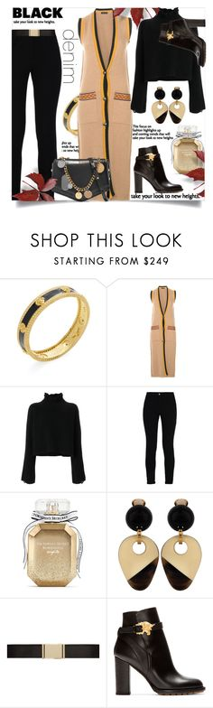 """""""Black Denim: Take Your Look To New Heights"""" by helenaymangual ❤ liked on Polyvore featuring Freida Rothman, Etro, Golden Goose, STELLA McCARTNEY, Victoria's Secret, Balmain, Valentino and Jimmy Choo"""