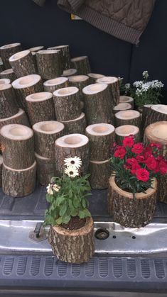 woodworking - Pots from chests Garden, Succulent garden landscape, Wood planters, Garden design, Yar Succulent Pots, Succulents Garden, Garden Pots, Balcony Garden, Succulents Drawing, Rusty Garden, Indoor Succulents, Succulent Care, Big Garden