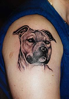 This looks just like my girl Chunk! Can't wait to get my new tattoo of my 3 dogs :)