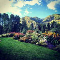 John Denver Sanctuary Gardens at Sunrise|Julie Kellams Hobor planting design and photo