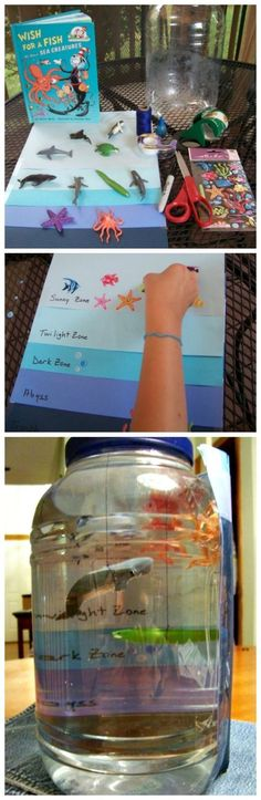 Ocean Habitat Project: Zones, Sea Animals & Deep Sea Creatures AMAZING STEM activity that teaches kids about ocean zones! Create your own ocean in a jar with this fun science craft for kids. Kid Science, Science Crafts For Kids, Science Fair Projects, Preschool Science, Science Lessons, Science Experiments, Stem Science, Preschool Crafts, Craft Kids