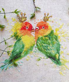 Parrot Royals, bright wonderful design.