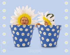 Trendy Ideas For Baby Photography Easter Anne Geddes Anne Geddes, Twin Girls, Twin Babies, Cute Babies, Cute Baby Pictures, Baby Photos, Baby Wallpaper, Baby Portraits, Newborn Baby Photography