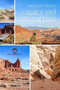 The Best Short Hikes in Capitol Reef National Park, Utah  Travel. Experience. Live.