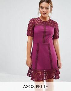 ASOS PETITE Premium Lace Insert Mini Dress