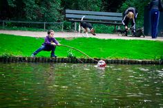 He's just trying so hard to get his ball out of the pond! Bless.    Amsterdam, 2011