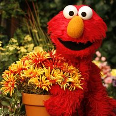 Elmo, 2000s Kids Shows, Sesame Street Muppets, Fraggle Rock, First Day Of Spring, Kermit, My Childhood, Puppets, Tigger