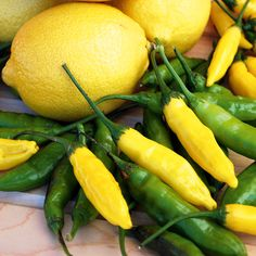 Pepper Chilli Seeds - Peruvian Lemon Drop - 156030 - Chilli and Pepper Seeds - Popular Vegetable Seeds - Vegetable Seeds - Gardening Chilli Seeds, Pepper Seeds, Planting Vegetables, Fruits And Vegetables, Veggies, Tomato Growers, Chilli Plant, Sutton Seeds, Growing Peppers