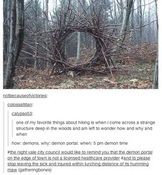 Please return to the Seelie Court to meet with your guide before wandering off to the Seelie portals to alternate dimensions. The risk of demon invasion is considerably less with your guide.  Thank you.