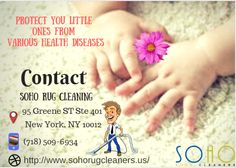 Rug Cleaning Services in New York