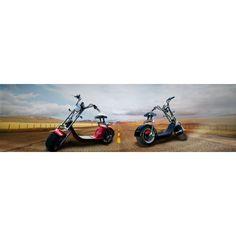 NEU Harley Coco City Roller Straßenzulassung Aluminium Felgen Elektroroller