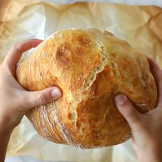 Miracle No Knead Bread! this is SO UNBELIEVABLY GOOD and ridiculously easy to make. crusty outside, soft and chewy inside - perfect for dunking in soups! | pinchofyum.com #bread #easy #recipe #noknead
