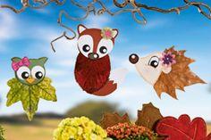 Basteln mit Laub ist eine wunderbare Möglichkeit, den Herbst kreativ zu nutzen. Wir zeigen Ihnen hier, wie Sie mit getrockneten Blättern Schmetterlinge basteln. Auch für kleine Hände geeignet! © 2014 OZ-Verlags-GmbH