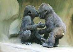 Affection Of Baby Gorillas. Read Full article: http://webneel.com/25-stunning-digital-art-works-and-photo-manipulations-monstro-studio | more http://webneel.com/digital-art . Follow us www.pinterest.com/webneel