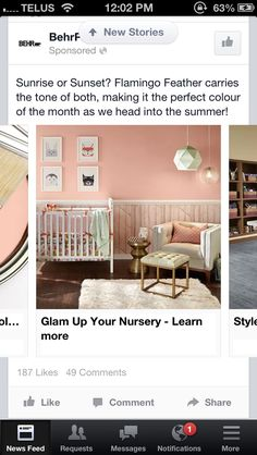Flamingo Feather Paint Home Depot