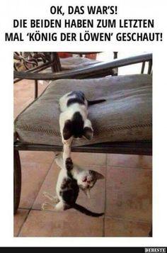 """""""Ich rette dich Brudi!"""""""
