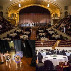 Caroline & Michael's wedding in the Large Theatre! Photos by Ryan Holland Photography