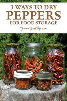 3 Ways to Dry Peppers for Food Storage: Drying is an excellent way to preserve peppers. Dehydrating removes the moisture and concentrates the flavor and heat of the peppers. Turn that bounty into a pantry staple that will add lots of flavor to your meals. Antipasto, Dehydrator Recipes, Food Processor Recipes, Dried Peppers, Dehydrated Food, Dehydrated Vegetables, Dried Vegetables, Stuffed Sweet Peppers, Canning Recipes