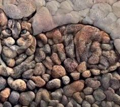Cat made from stones!
