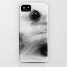 Forever Watching iPhone Case by Fiona & Paul Photography and Digital Art - $35.00