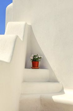 The Flower Pot, Santorini Island, Greece Santorini Greece, Mykonos, Santorini Island, Greek House, Greek Isles, Greece Islands, Shades Of White, Greece Travel, All White