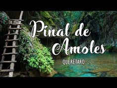 ¡Puente de Dios, Río Escanela y más! - Pinal de Amoles | QUERÉTARO - YouTube What A Wonderful World, Future Travel, Mexico Travel, Travel Goals, Vacation Destinations, Time Travel, Just Go, Wonders Of The World, Adventure Time