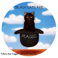 Hope your #Caturday is magic. Who thinks black cats are magic and as special as unicorns?
