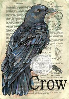 Druck: Crow Mischtechnik Zeichnung auf antike Wörterbuch