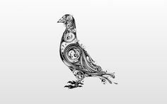 pigeon Incredible Hand Drawn Illustrations by Si Scott