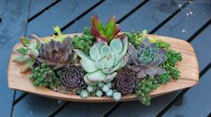 Succulent arrangement in wooden container by iDreamOfSucculents, $30.00