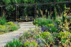 DSC_0408.jpg (3790×2537) Michael McCoy - gardening & landscaping