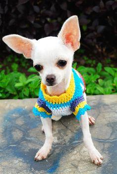 crochet dog sweater by myknitt