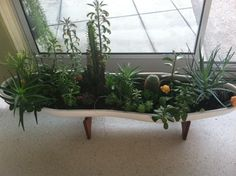 planter heaven