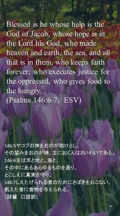 Blessed is he whose help is the God of Jacob, whose hope is in the Lord his God, who made heaven and earth, the sea, and all that is in them, who keeps faith forever; who executes justice for the oppressed, who gives food to the hungry. (Psalms 146:6-7,  ESV)146:5ヤコブの神をおのが助けとし、 その望みをおのが神、主におく人はさいわいである。 146:6主は天と地と、海と、 その中にあるあらゆるものを造り、 とこしえに真実を守り、 146:7しえたげられる者のためにさばきをおこない、 飢えた者に食物を与えられる。 (詩篇 口語訳)