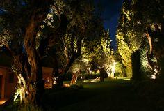 #6keys #Garden #Afissos #Volos #Pelion #Greece