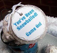 Start a Snowball Fight! Mexican Wedding Cookies, Cake Balls, Donut Holes?