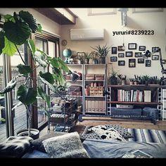 yururi-8239223さんの、コンクリートブロック,IKEAの棚,コンクリートブロックの棚,インダストリアル,NO GREEN NO LIFE,見せる収納,ウンベラータ,フォトフレーム,100均,クッション,ニトリ,フロアライト,IKEA,無印良品,リビング,のお部屋写真