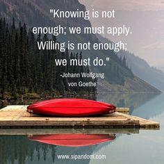 #sipandom #dailymeditation #meditation #meditation #meditate #meditationquotes