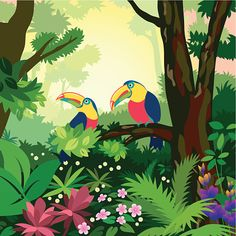 Beautiful Rainforest Illustration