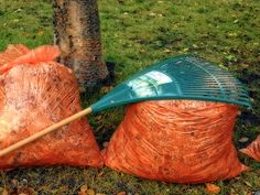 Spring Lawn Care Tip #1: Raking http://evergreenturf.com/5-lawn-care-tips-for-spring.php