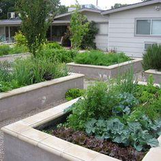Modern Landscape - modern - landscape - las vegas.  Lovely raised garden beds