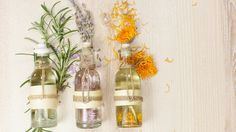 7 Essential Oils You MUST Own in 2017!