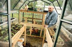 Chicken coop + greenhouse    [unknown source]