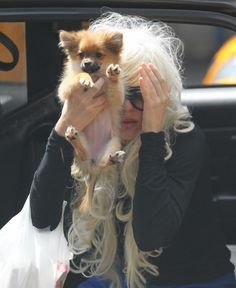 Amanda Bynes stripped off her pants to chase after gasoline-soaked dog after starting fire in stranger's driveway WTF