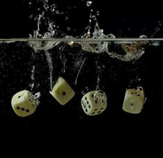dices in water