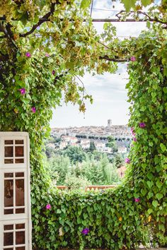 View through wine leaves at Matisse Chapel in Vence