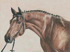 Dun Horse by Ianish on DeviantArt
